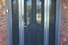 Stainless steel door with Panels